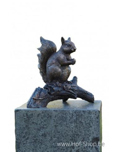 Eekhoorn op tak - bronzen beeld